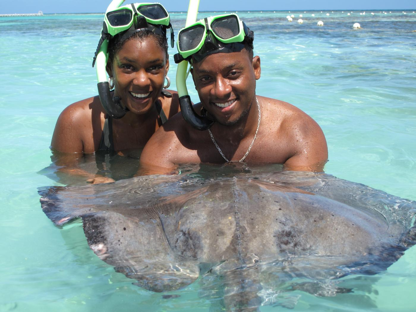 Stingray Sensation in Antigua