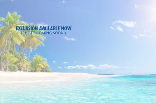 caribbean excursion available now photo coming soon