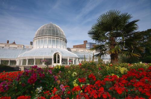 glass greenhouse and flowers in belfast