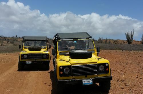 yellow jeeps driving along dirt road
