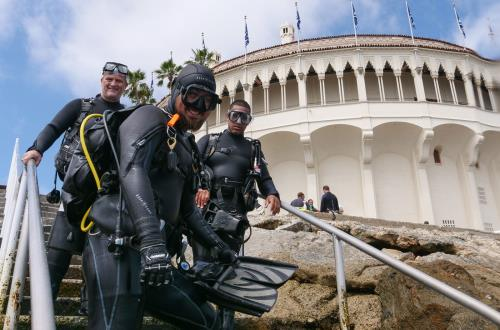 divers are geared up and ready to dive into the waters in catalina, ca