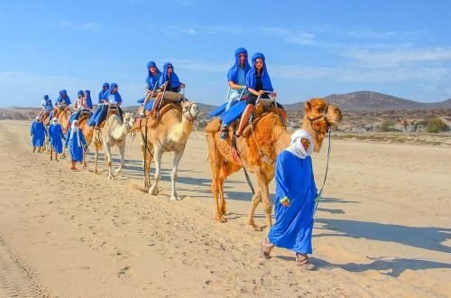 guests on camel ride through desert in cabo san lucas