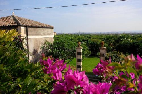 catania and the mulberry farmhouse in sicily