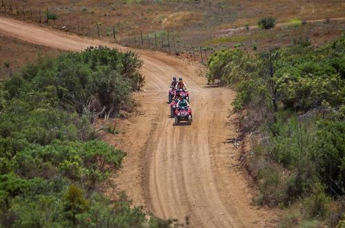 a group of guests riding atv's on the dirt road