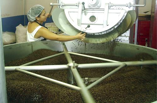 A Real Coffee Experience in Puntarenas, Costa Rica