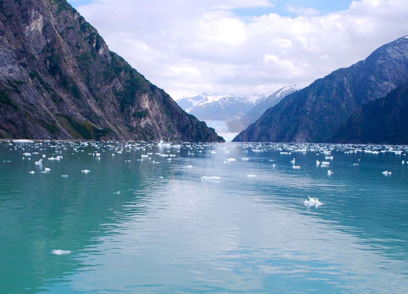 breathtaking views of the majestic sawyer glaciers in the tracy arm fjord