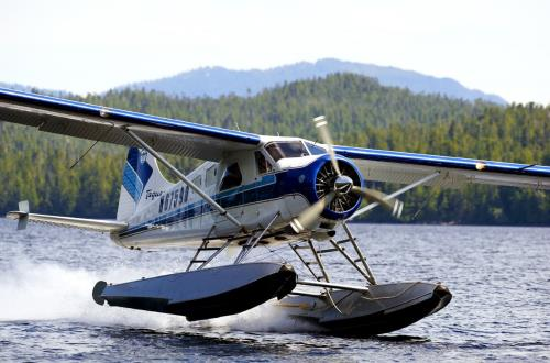 small plane making water landing