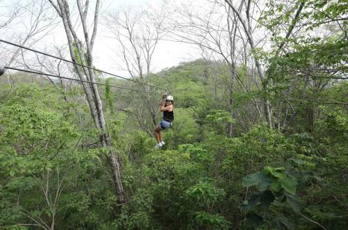 guest zip lines through forest canopy