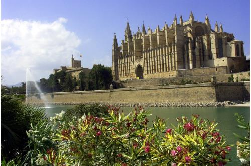 Top 10 Best of Palma
