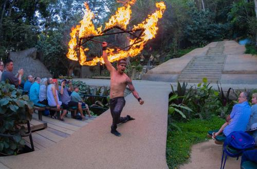 a performer holds a star of fire while guests watch is amazement