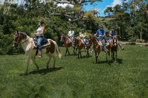 guests horseback ride in san juan