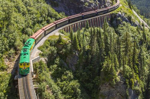 a train goes around a mountain full of trees