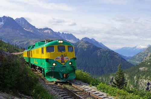 a train with a logo of a bird rides around a mountain full of trees