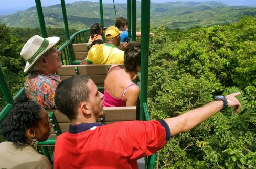 Ultimate Rainforest Adventure- Zip, Hike, Sky Ride in St. Lucia, WI