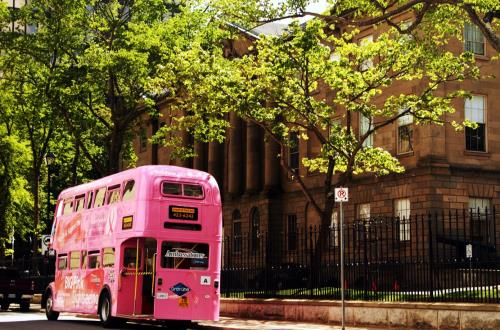Big Pink Bus Tour – Hop On Hop Off in Halifax, Ns, Canada