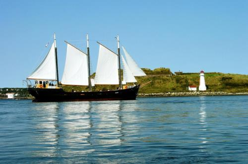 Canadian Tall Ship Sailing Experience in Halifax, Ns, Canada