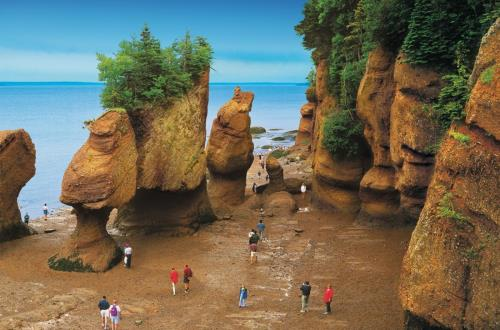 Hopewell Rocks Tidal Discovery in Saint John, Nb, Canada